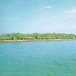 Sundarbans National Park (1987)